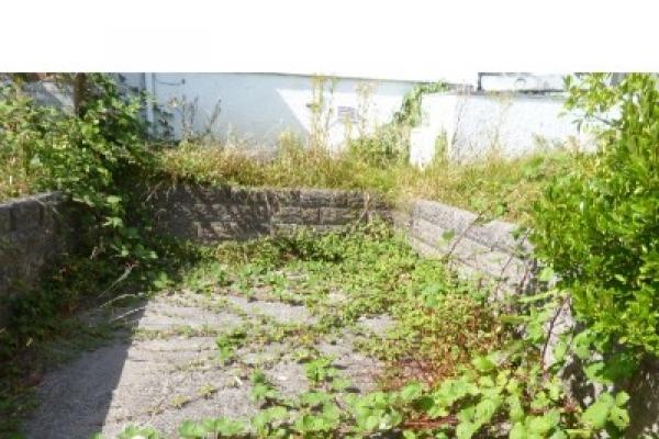 house-and-garden-clearance-beddau-59B61E4E70-08AE-0C80-A2A5-88EDA119D85F.jpg