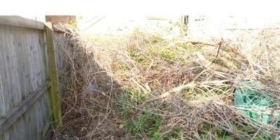 waste-removed-pen-y-fai-262472D89-B8CD-A7C5-1EEA-DC6B376D6A07.jpg