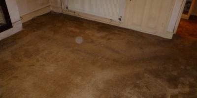 shed-clearance-fairwater-22517C719-506D-59BB-79E0-0F4833E8F251.jpg