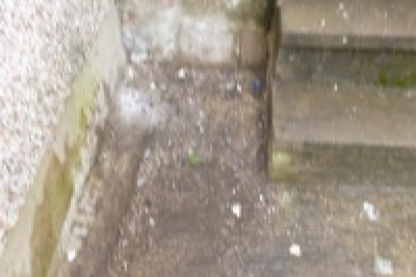 porthcawl-waste-clearance-106278834F8-BAA4-7A7E-3E4B-C1486E334E71.jpg