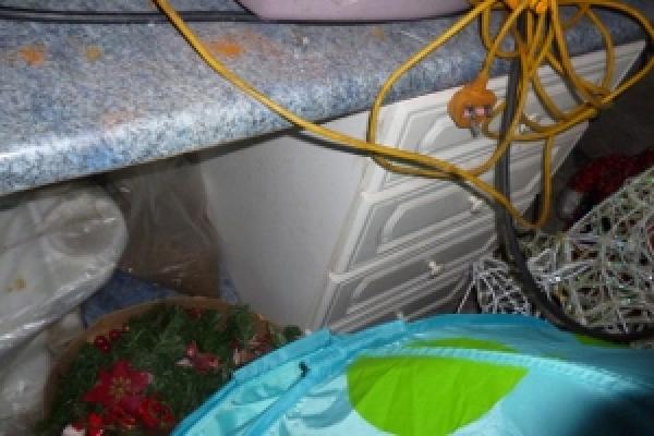 porthcawl-waste-clearance-12615B06FF1-2158-0B99-BEA2-1A6C1850199B.jpg
