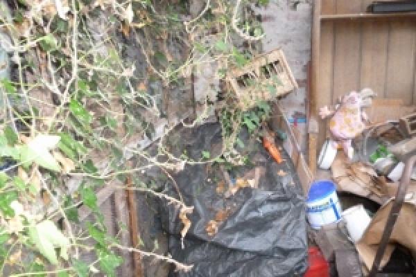 porthcawl-waste-clearance-65FE81C14C-4C64-93A9-32E3-C3CDE6248C86.jpg