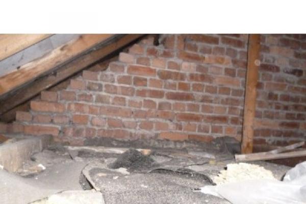 house-and-garden-clearance-beddau-701F2620A8-97EF-0956-30D0-11927816DABD.jpg