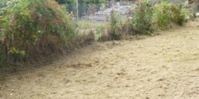 cefn-glas-bridgend-garden-clearance-133-300x200475E31B6-753A-C0EA-94B8-07866B90110A.jpg