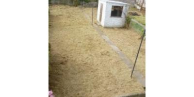 cefn-glas-bridgend-garden-clearance-134-200x3005A25E4BC-B5EE-C026-000C-7D98C045B8ED.jpg